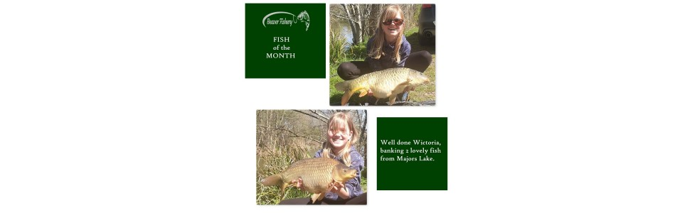 Fish of the Month - April