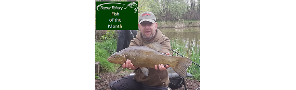 Fish of the Month