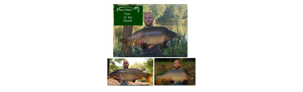 Fish of the Month - August